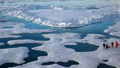 Photo of New tool allows students to explore the Arctic virtually